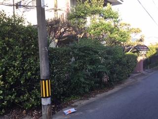 福岡トーヨー 大牟田店の庭の草刈りが大変の施工前の写真1