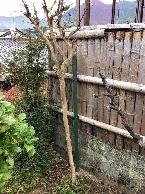 福岡トーヨー 大牟田店のフェンス設置の施工前の写真2